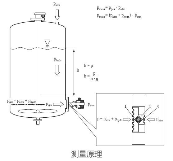德国E+H – FMB52静压式液位开关/液位计
