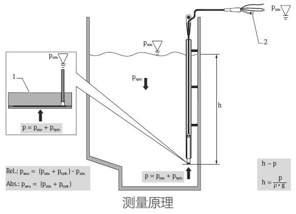 德国E+H – FMX21静压式液位开关/液位计